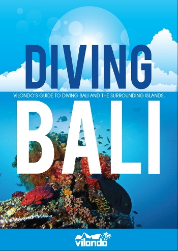 Diving Bali Cover