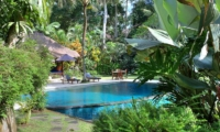 Gardens and Pool - Alamanda Villa - Ubud, Bali
