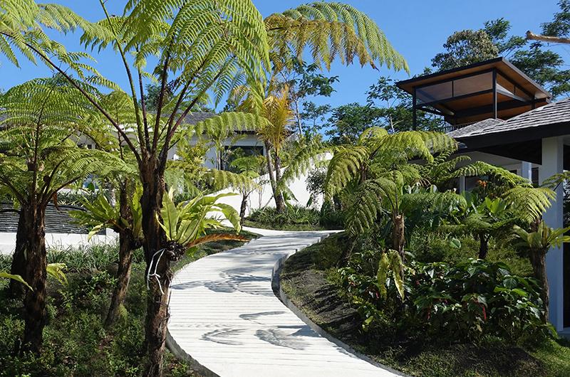 Pathway - Alta Vista - North Bali, Bali
