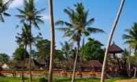 Trees - Puri Nirwana - Gianyar, Bali