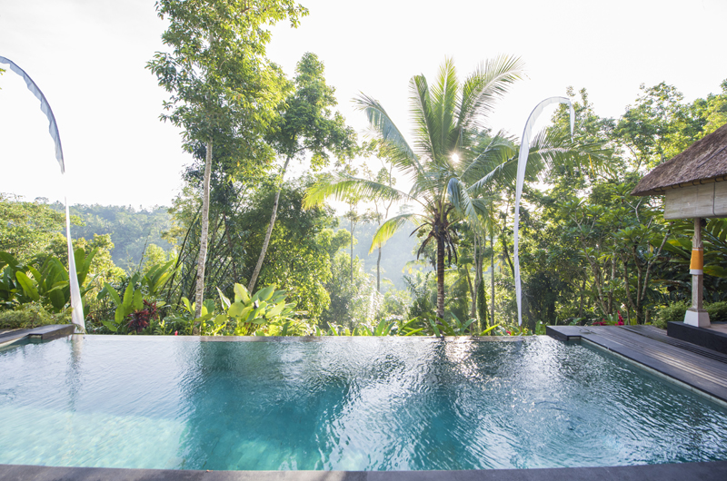 Swimming Pool - Shamballa Residence - Ubud, Bali