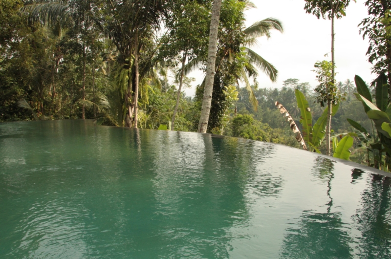 Private Pool - Villa Bodhi - Ubud, Bali