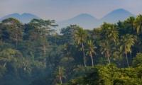 Outdoor View - Villa Bukit Naga - Ubud, Bali