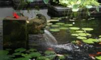 Water Feature - Villa Des Indes 1 - Seminyak, Bali
