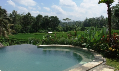 Swimming Pool with View - Villa Kembang - Ubud, Bali