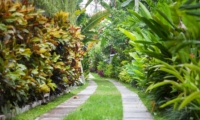 Pathway - Villa Liang - Batubelig, Bali