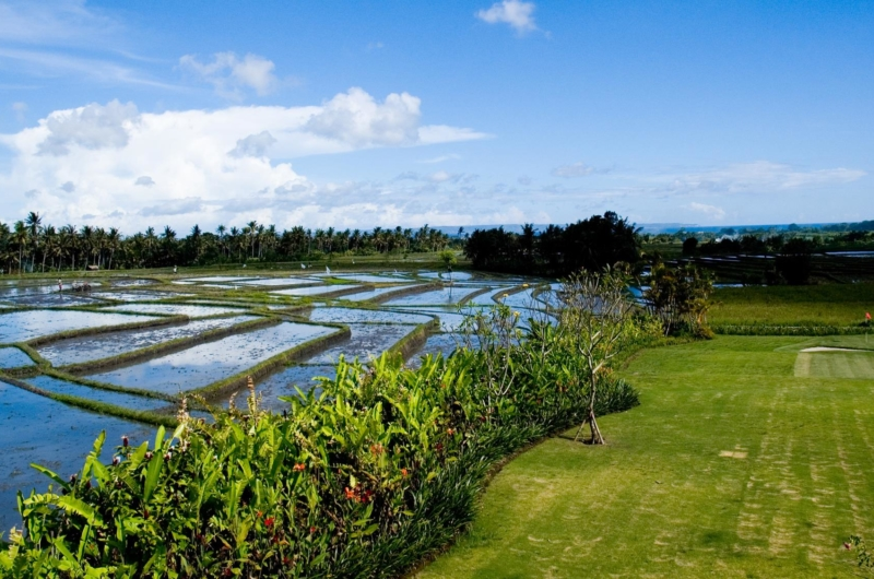 Rice Fields View - Villa Mandalay - Seseh, Bali