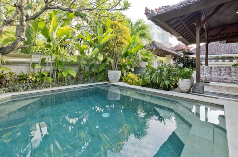 Swimming Pool - Villa Orchid Sanur - Sanur, Bali