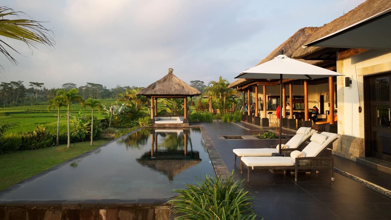 Swimming Pool with View - Villa Rumah Lotus - Ubud, Bali