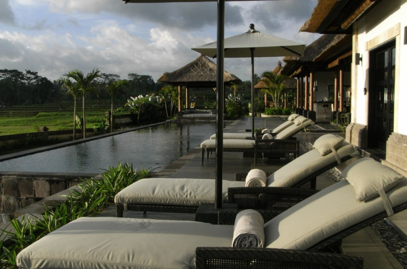 Pool with View - Villa Rumah Lotus - Ubud, Bali