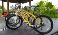 Cycle Stand - Villa Rumah Lotus - Ubud, Bali
