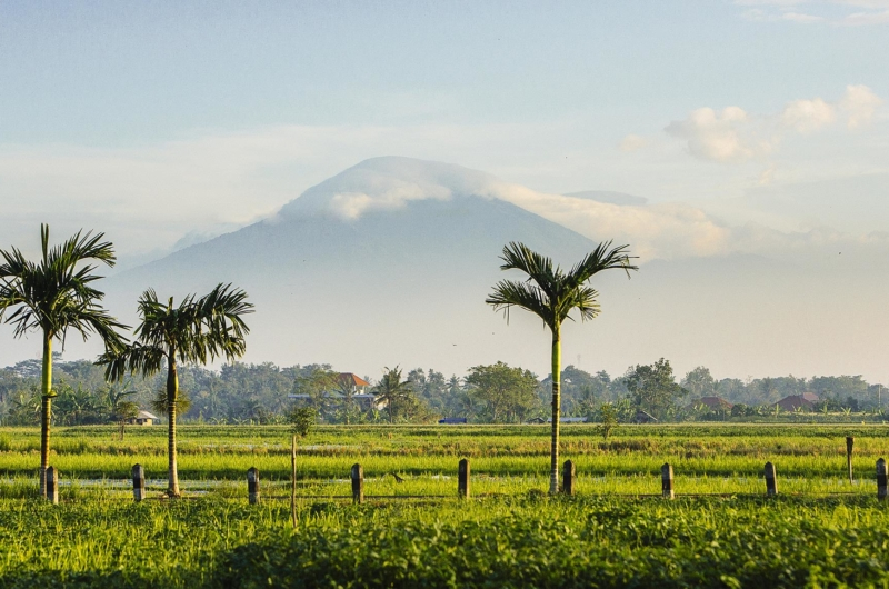 Fields View - Villa Semarapura - Seseh, Bali