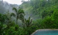 View from Pool - Villa Umah Shanti - Ubud, Bali