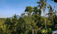 View from Villa - Villa Vastu - Ubud, Bali