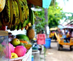 Fruits Gili Trawangan