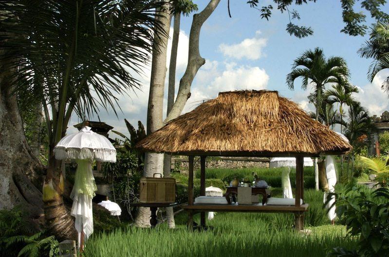 Gardens - Kamandalu Ubud - Ubud, Bali