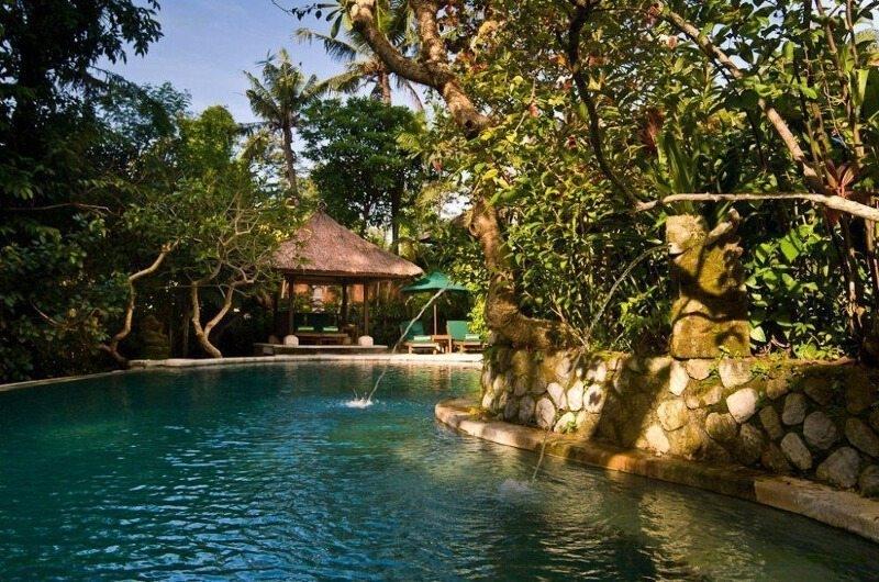 Swimming Pool - Villa Bougainvillea - Canggu, Bali