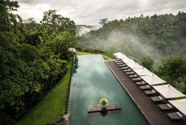 Alila Ubud Infinity Pool 14